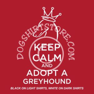 greyhound_adopt_calm_elegant